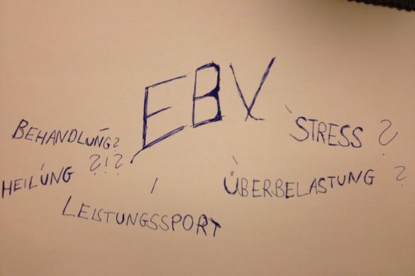 Das Epstein Barr Virus - EBV