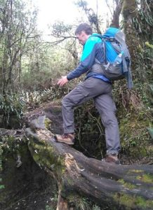 Dolomite Pordoi in Ecuador
